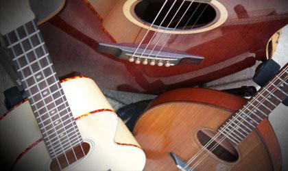 WEA Folk Ensemble Course Penistone Grammar School Chris McShane