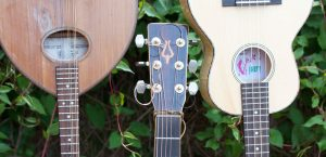 WEA Folk and Acoustic Guitar Courses 2016